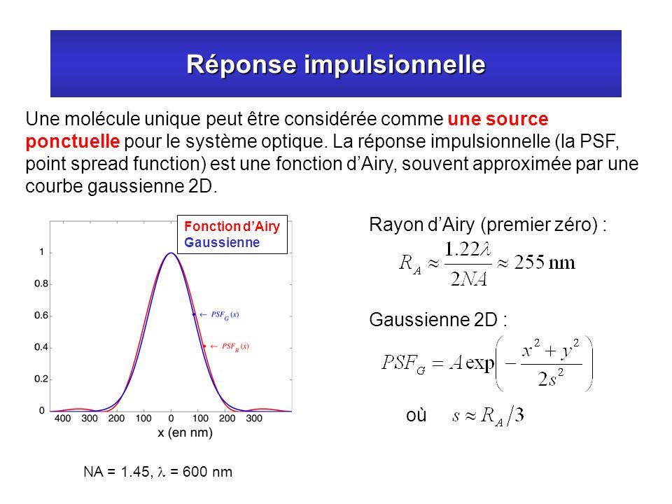 Réponse impulsionnelle Une molécule unique peut être considérée comme une source ponctuelle pour le système optique. La réponse impulsionnelle (la PSF