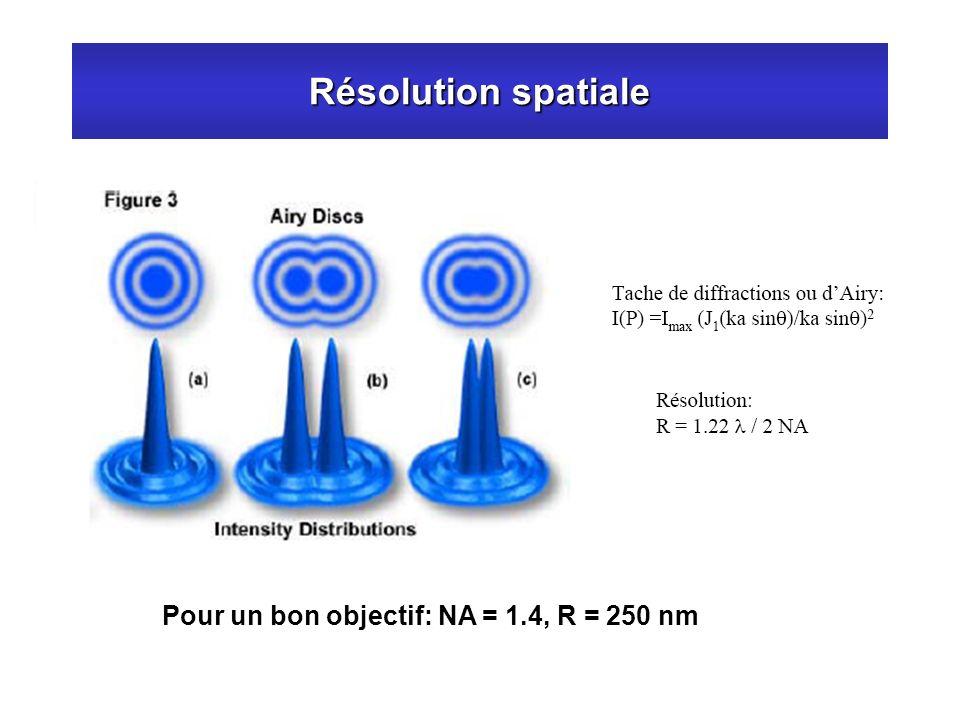 Résolution spatiale Pour un bon objectif: NA = 1.4, R = 250 nm