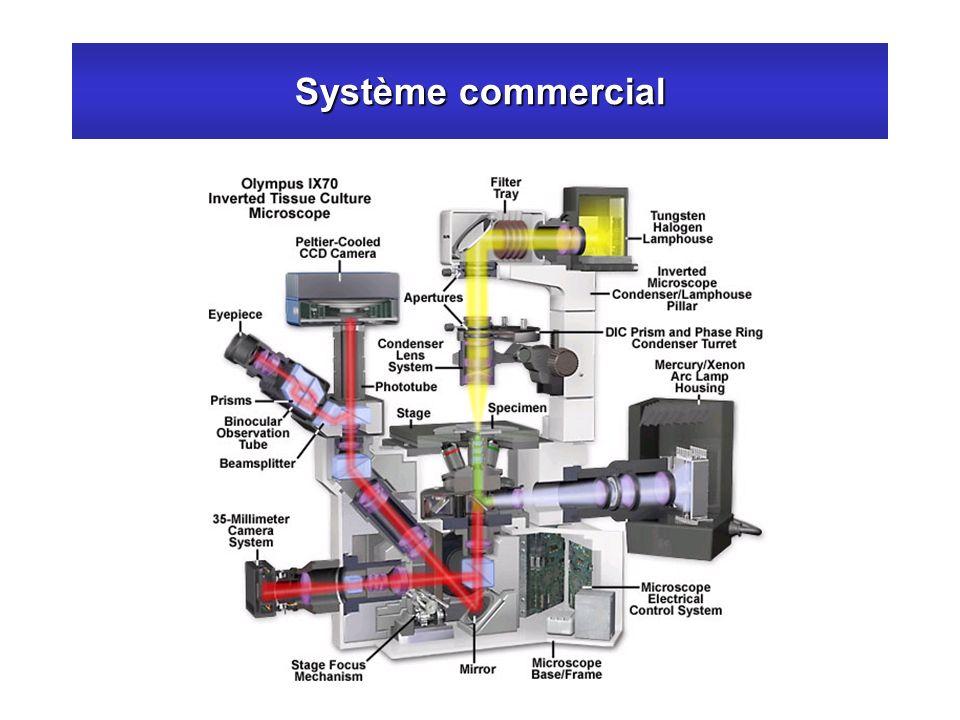Système commercial