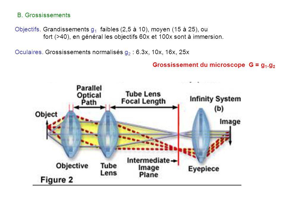 Grossissement du microscope G = g 1.g 2 Objectifs. Grandissements g 1 faibles (2,5 à 10), moyen (15 à 25), ou fort (>40), en général les objectifs 60x
