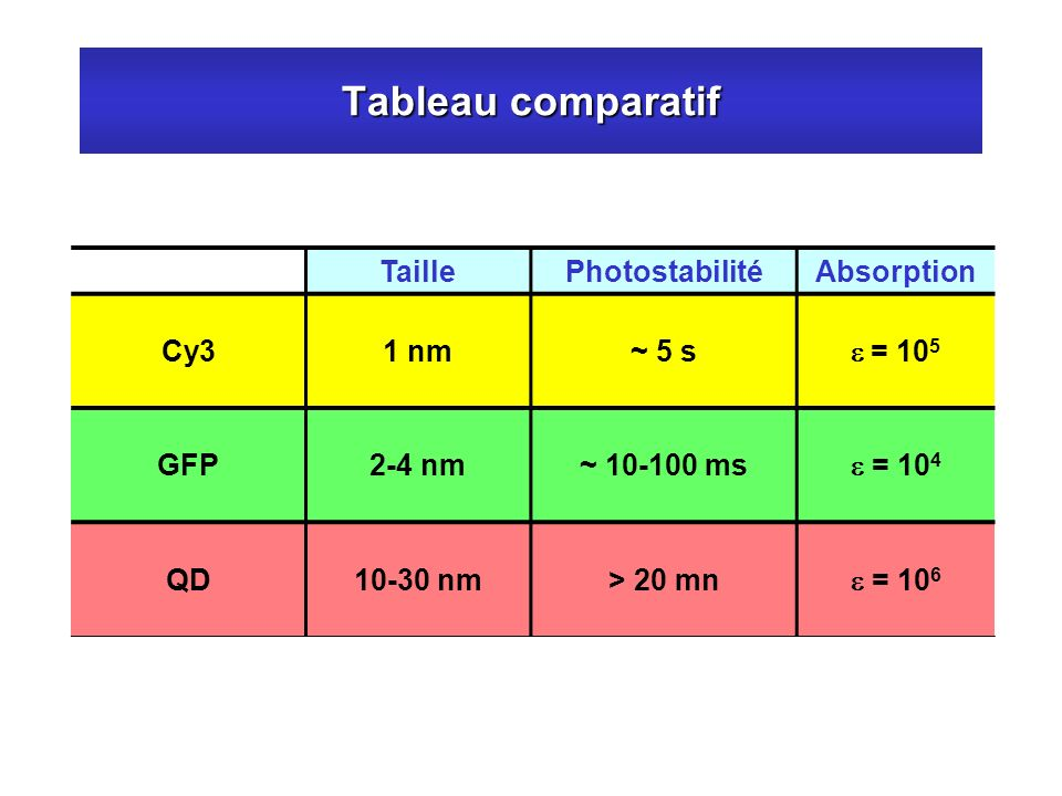 Tableau comparatif TaillePhotostabilitéAbsorption Cy31 nm~ 5 s = 10 5 GFP2-4 nm~ 10-100 ms = 10 4 QD10-30 nm> 20 mn = 10 6