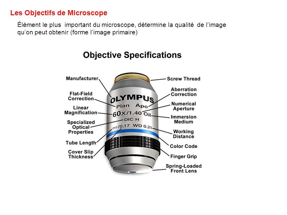 Les Objectifs de Microscope Élément le plus important du microscope, détermine la qualité de limage quon peut obtenir (forme limage primaire)