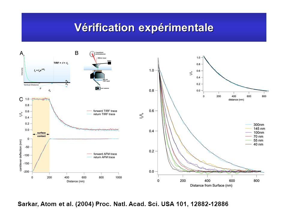 Vérification expérimentale Sarkar, Atom et al. (2004) Proc. Natl. Acad. Sci. USA 101, 12882-12886