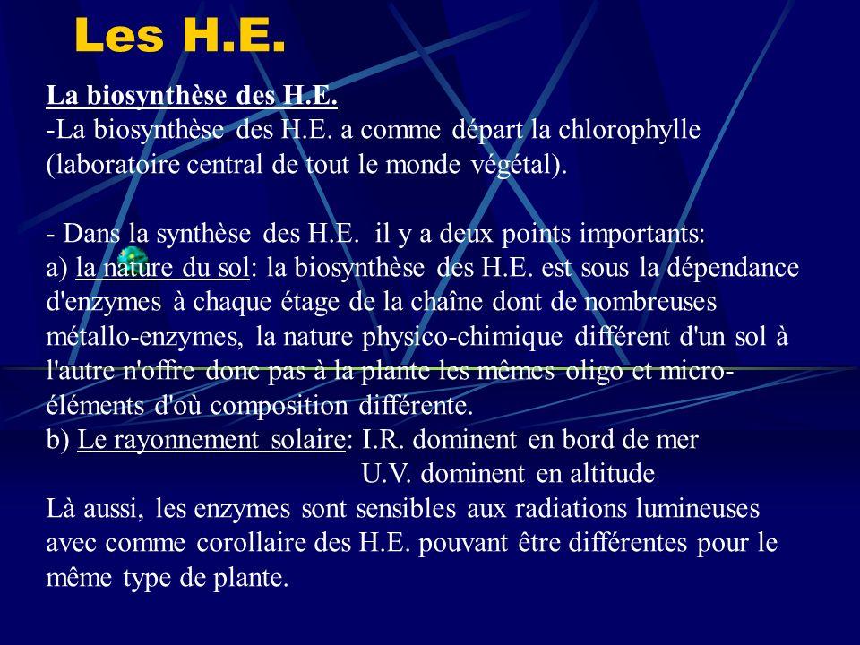 Les H.E.La biosynthèse des H.E. -La biosynthèse des H.E.