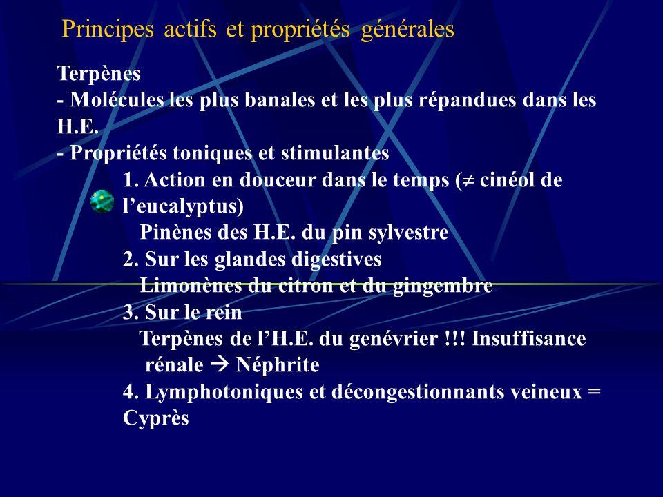 Terpènes - Molécules les plus banales et les plus répandues dans les H.E.