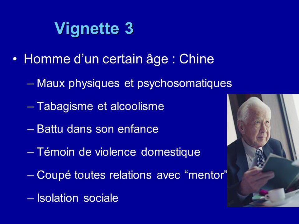 Vignette 3 Homme dun certain âge : Chine –Maux physiques et psychosomatiques –Tabagisme et alcoolisme –Battu dans son enfance –Témoin de violence dome