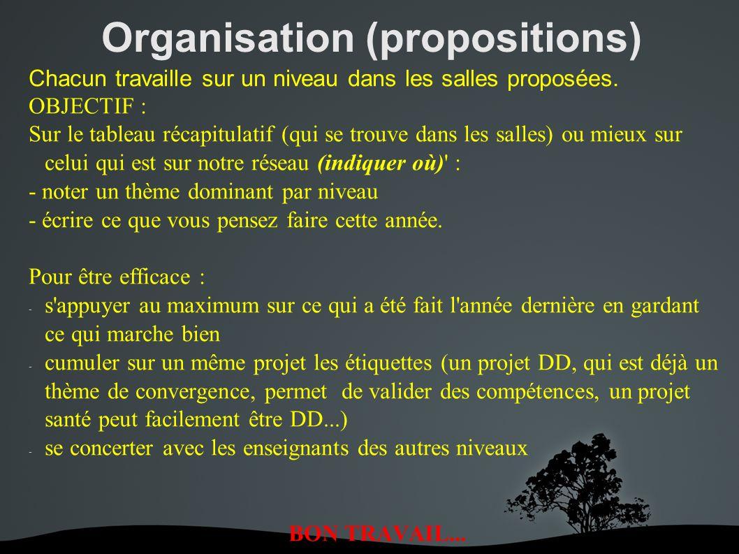 Organisation (propositions) Chacun travaille sur un niveau dans les salles proposées.