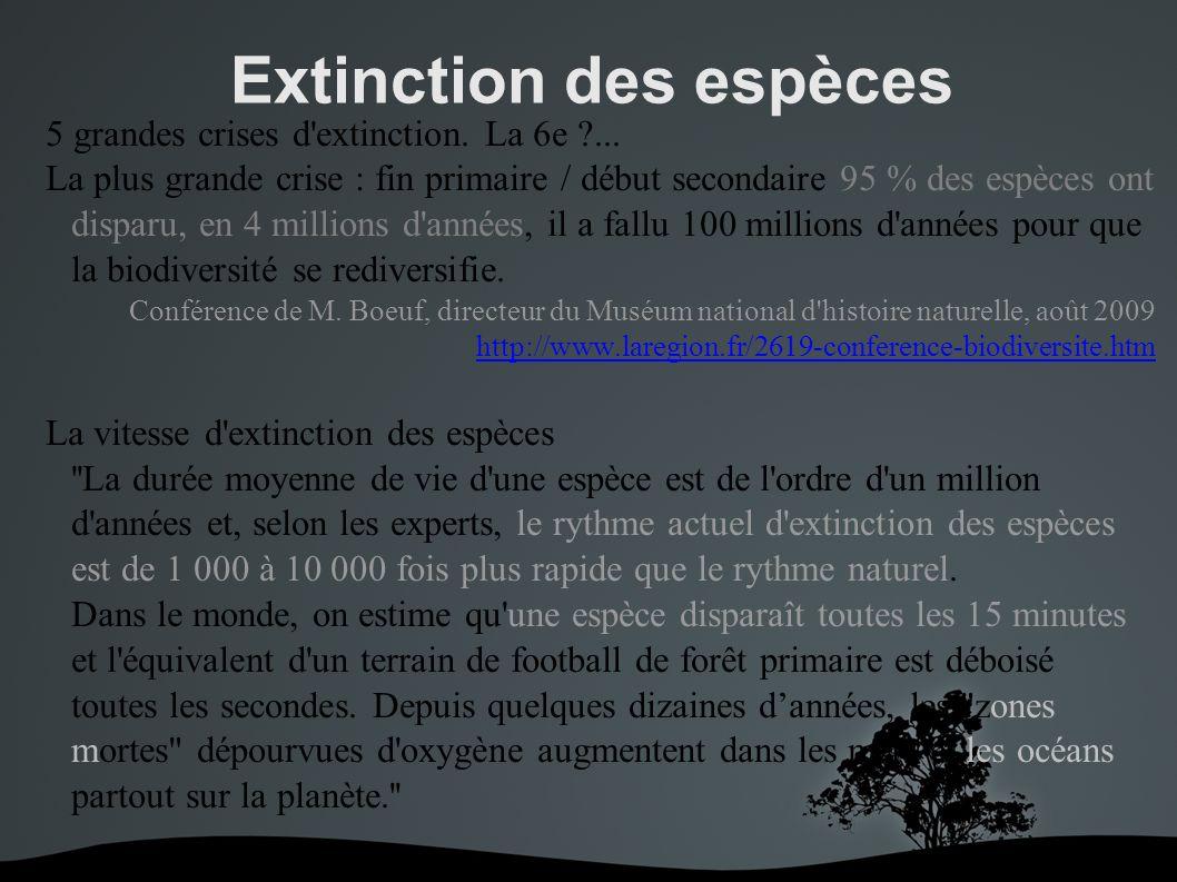 Extinction des espèces 5 grandes crises d extinction.