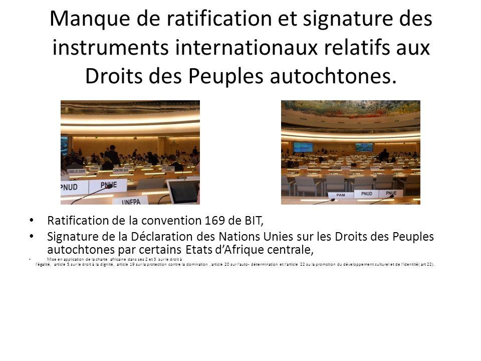 Manque de ratification et signature des instruments internationaux relatifs aux Droits des Peuples autochtones.