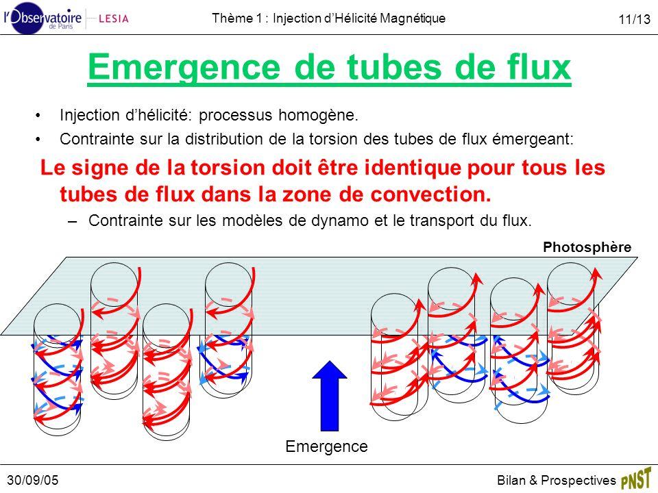30/09/05Bilan & Prospectives 11/13 Thème 1 : Injection dHélicité Magnétique Emergence de tubes de flux Injection dhélicité: processus homogène. Contra
