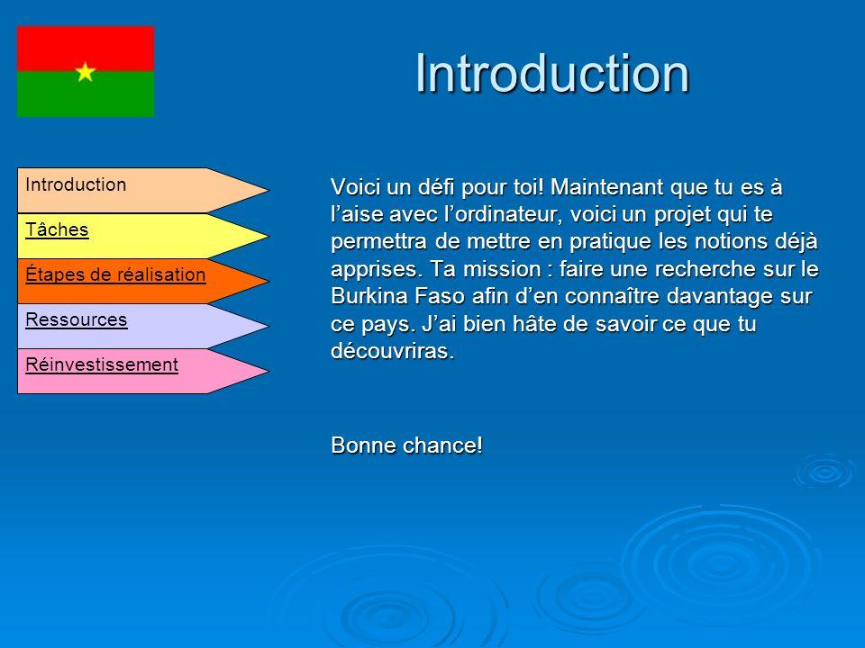Tâches Suite à cette activité, tu devras présenter un aspect du Burkina Faso à tes camarades de classe.