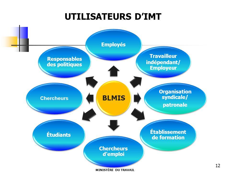 BLMIS Employés Travailleur indépendant/ Employeur Organisation syndicale/ patronale Établissement de formation Chercheurs demploi Étudiants Chercheurs