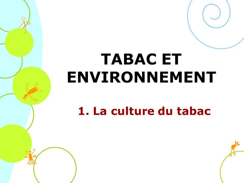 TABAC ET ENVIRONNEMENT 1. La culture du tabac