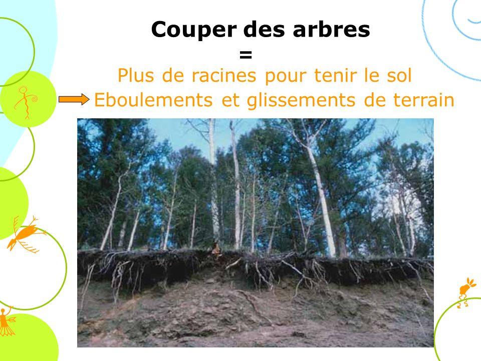 Plus de racines pour tenir le sol Eboulements et glissements de terrain Couper des arbres =