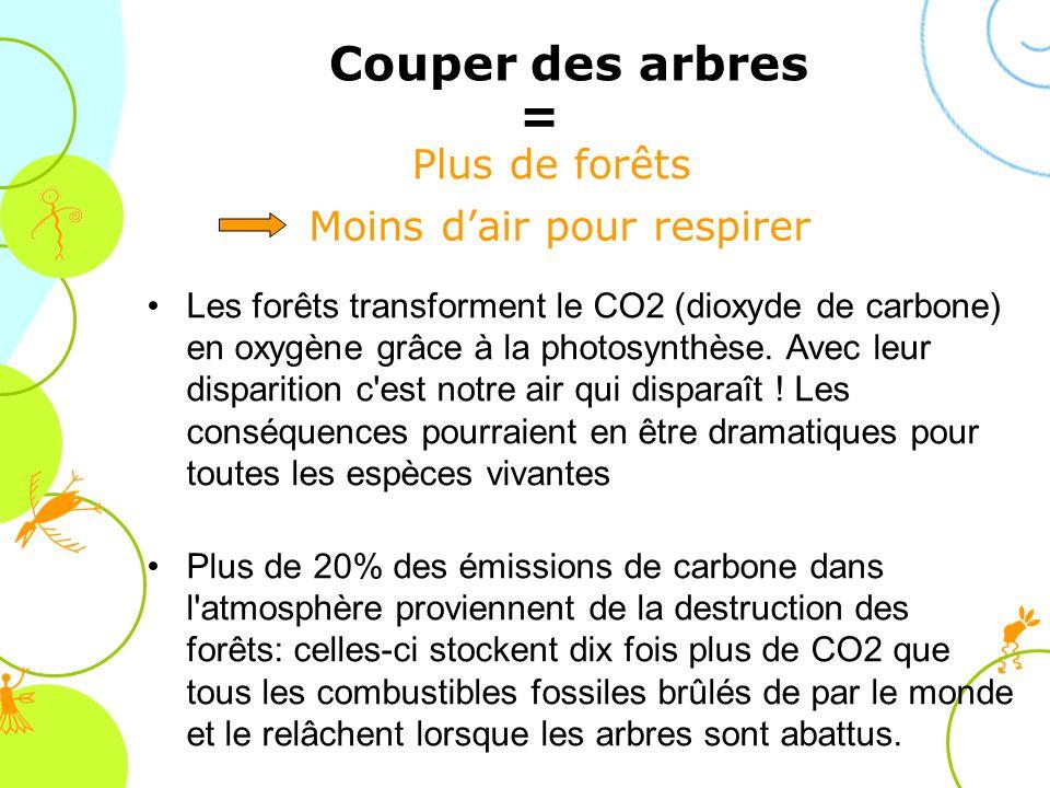 Les forêts transforment le CO2 (dioxyde de carbone) en oxygène grâce à la photosynthèse. Avec leur disparition c'est notre air qui disparaît ! Les con