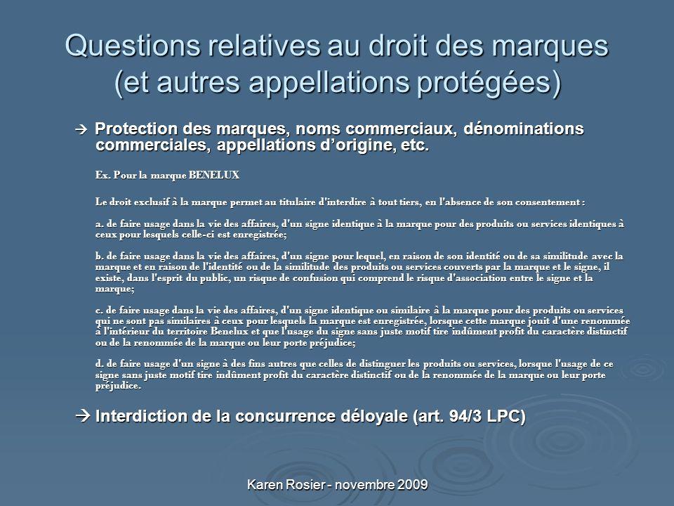 Karen Rosier - novembre 2009 Questions relatives au droit des marques (et autres appellations protégées) Protection des marques, noms commerciaux, dénominations commerciales, appellations dorigine, etc.