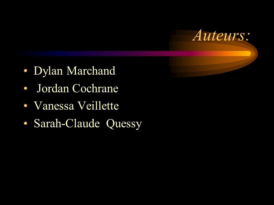 Auteurs: Dylan Marchand Jordan Cochrane Vanessa Veillette Sarah-Claude Quessy