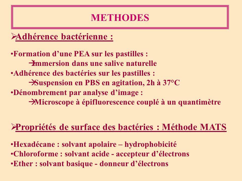 METHODES Adhérence bactérienne : Formation dune PEA sur les pastilles : Immersion dans une salive naturelle Adhérence des bactéries sur les pastilles