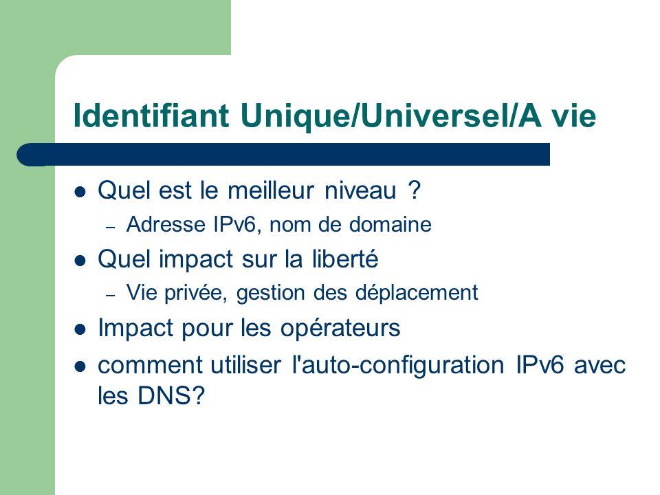 Identifiant Unique/Universel/A vie Quel est le meilleur niveau ? – Adresse IPv6, nom de domaine Quel impact sur la liberté – Vie privée, gestion des d