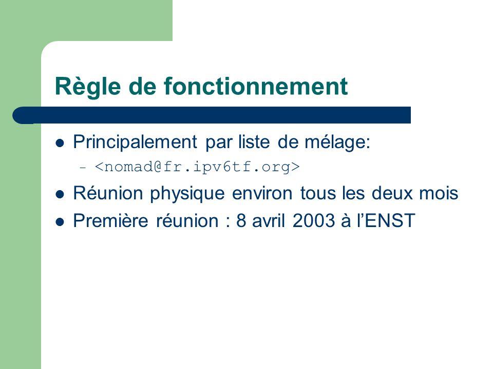Règle de fonctionnement Principalement par liste de mélage: – Réunion physique environ tous les deux mois Première réunion : 8 avril 2003 à lENST