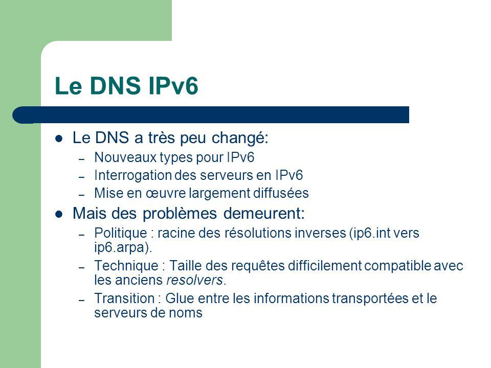 Le DNS IPv6 Le DNS a très peu changé: – Nouveaux types pour IPv6 – Interrogation des serveurs en IPv6 – Mise en œuvre largement diffusées Mais des problèmes demeurent: – Politique : racine des résolutions inverses (ip6.int vers ip6.arpa).