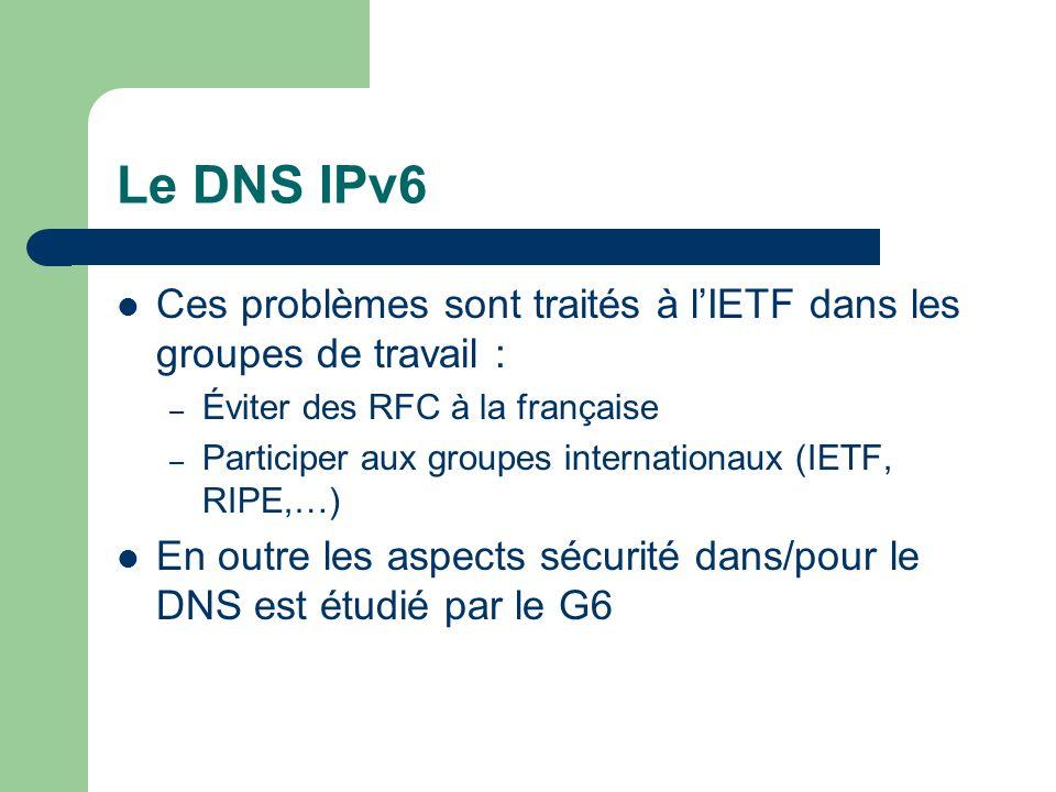 Le DNS IPv6 Ces problèmes sont traités à lIETF dans les groupes de travail : – Éviter des RFC à la française – Participer aux groupes internationaux (IETF, RIPE,…) En outre les aspects sécurité dans/pour le DNS est étudié par le G6