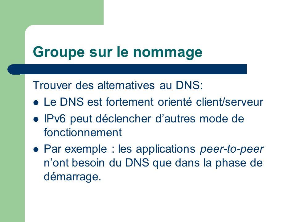 Groupe sur le nommage Trouver des alternatives au DNS: Le DNS est fortement orienté client/serveur IPv6 peut déclencher dautres mode de fonctionnement Par exemple : les applications peer-to-peer nont besoin du DNS que dans la phase de démarrage.