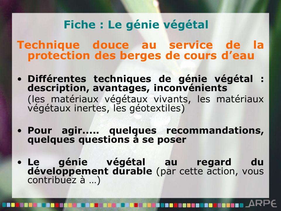 Fiche : Le génie végétal Technique douce au service de la protection des berges de cours deau Différentes techniques de génie végétal : description, a