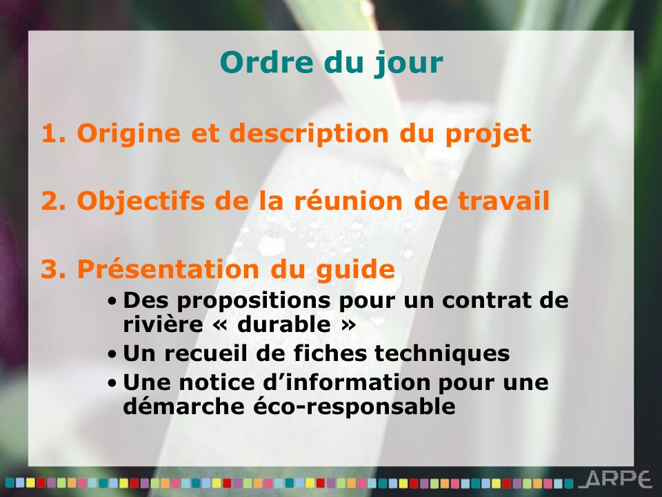 Ordre du jour 1. Origine et description du projet 2. Objectifs de la réunion de travail 3. Présentation du guide Des propositions pour un contrat de r