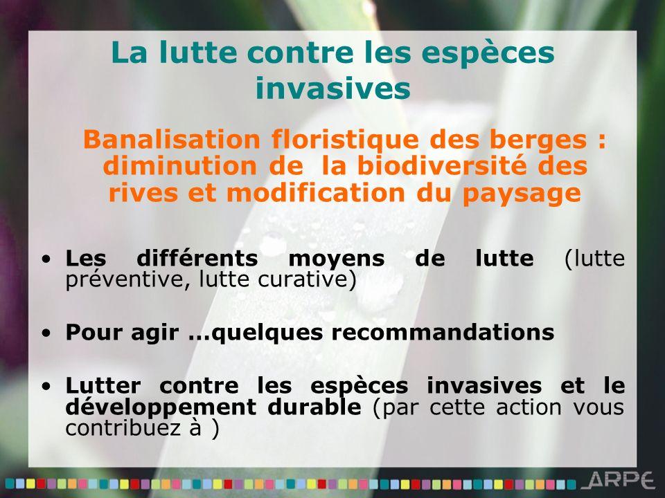 La lutte contre les espèces invasives Banalisation floristique des berges : diminution de la biodiversité des rives et modification du paysage Les dif