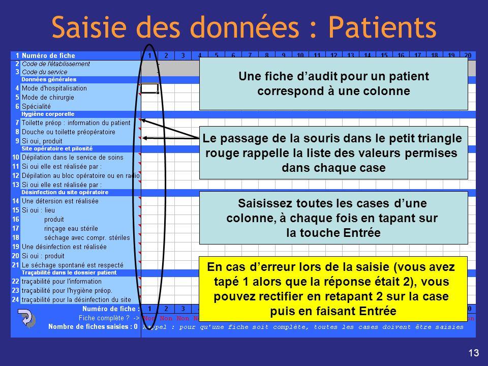13 Saisie des données : Patients Une fiche daudit pour un patient correspond à une colonne Saisissez toutes les cases dune colonne, à chaque fois en t