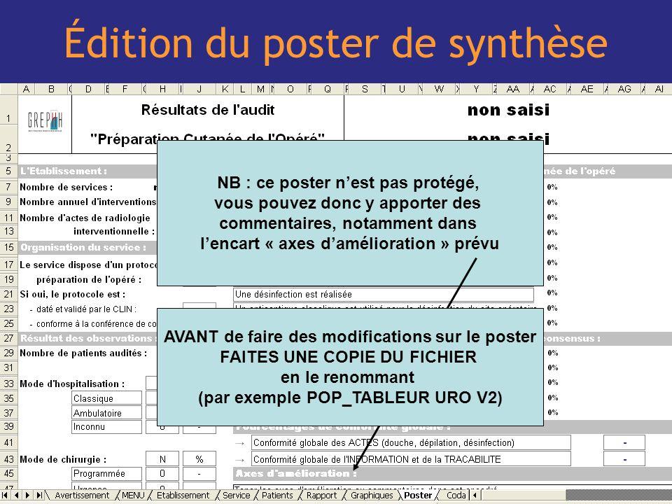 22 Édition du poster de synthèse NB : ce poster nest pas protégé, vous pouvez donc y apporter des commentaires, notamment dans lencart « axes damélior