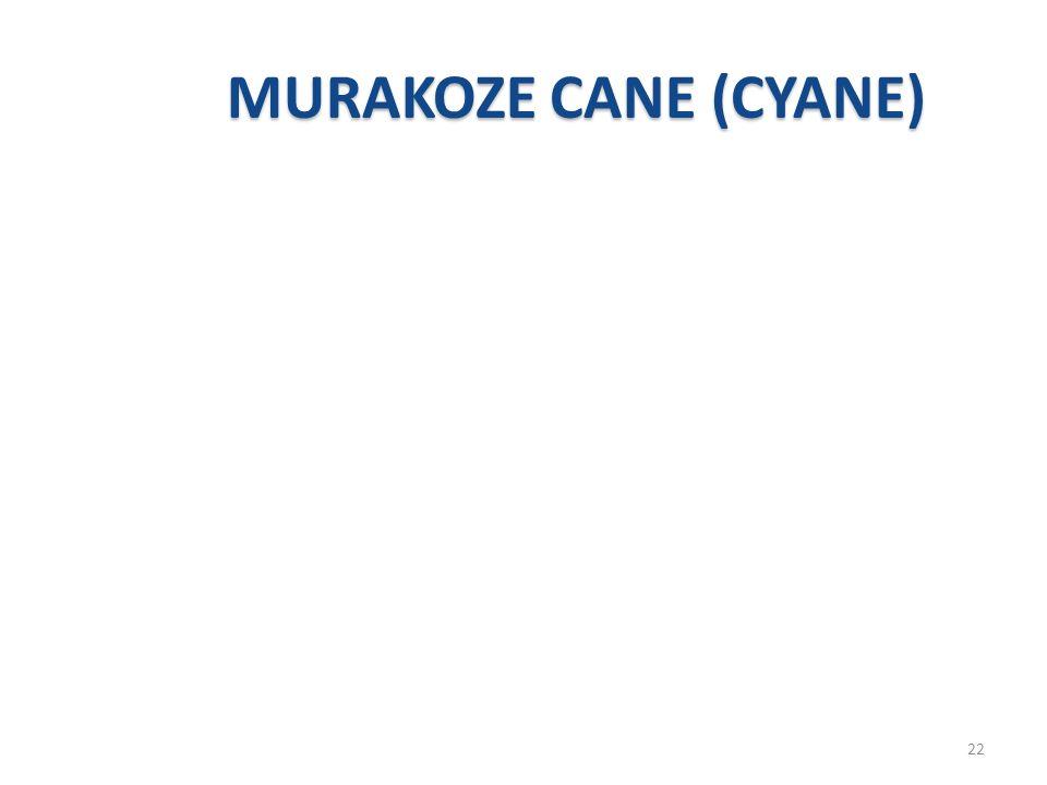 MURAKOZE CANE (CYANE) 22