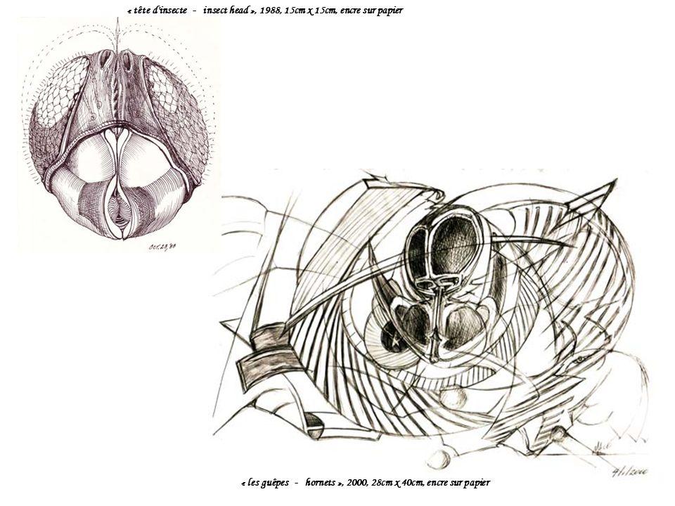 « tête d insecte - insect head », 1988, 15cm x 15cm, encre sur papier « les guêpes - hornets », 2000, 28cm x 40cm, encre sur papier