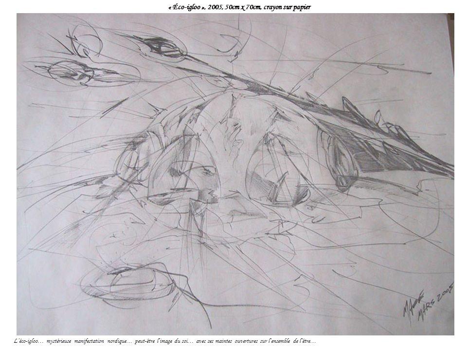 « Éco-igloo », 2005, 50cm x 70cm, crayon sur papier Léco-igloo… mystérieuse manifestation nordique… peut-être limage du soi… avec ses maintes ouvertures sur lensemble de lêtre…