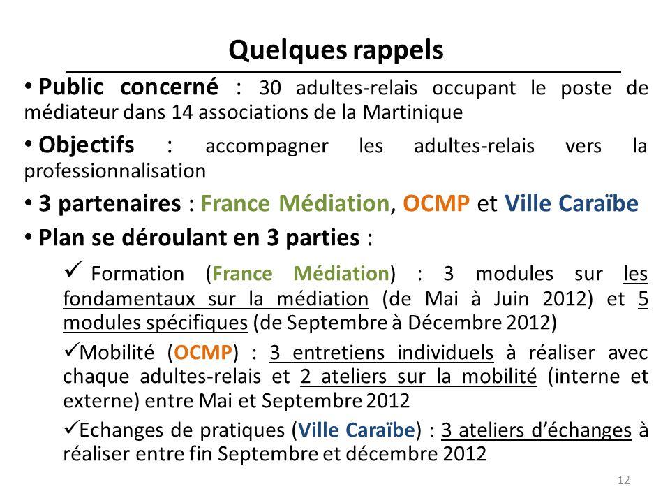 12 Quelques rappels Public concerné : 30 adultes-relais occupant le poste de médiateur dans 14 associations de la Martinique Objectifs : accompagner l