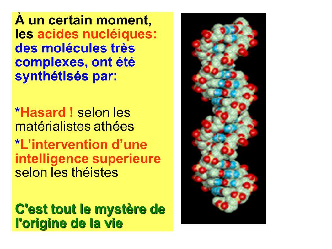 À un certain moment, les acides nucléiques: des molécules très complexes, ont été synthétisés par: *Hasard ! selon les matérialistes athées *Linterven