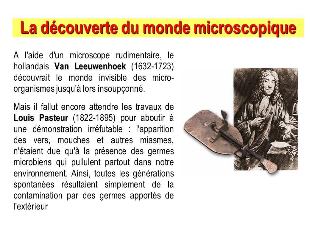 La découverte du monde microscopique Van Leeuwenhoek A l'aide d'un microscope rudimentaire, le hollandais Van Leeuwenhoek (1632-1723) découvrait le mo