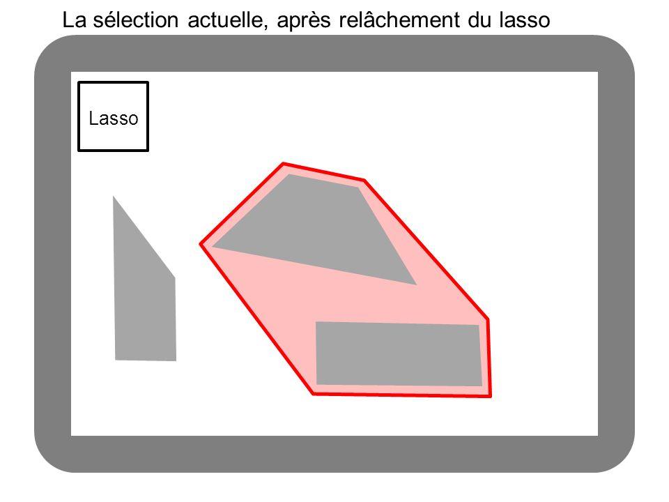 Lasso La sélection actuelle, après relâchement du lasso