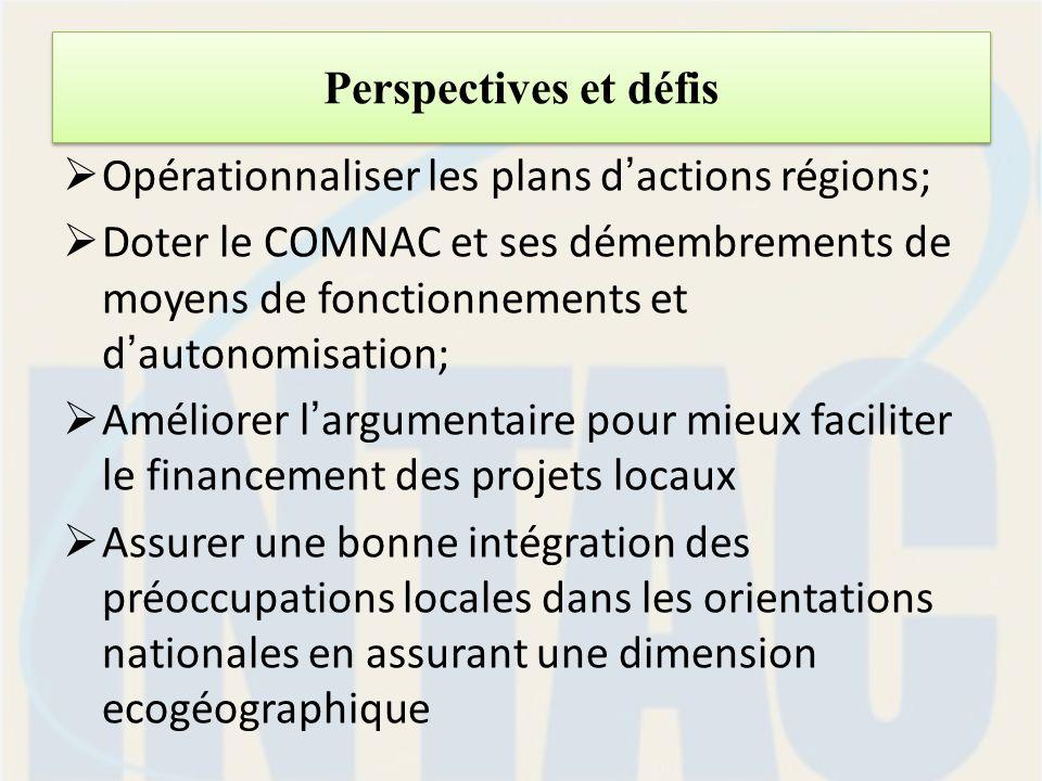 Perspectives et défis Opérationnaliser les plans dactions régions; Doter le COMNAC et ses démembrements de moyens de fonctionnements et dautonomisation; Améliorer largumentaire pour mieux faciliter le financement des projets locaux Assurer une bonne intégration des préoccupations locales dans les orientations nationales en assurant une dimension ecogéographique