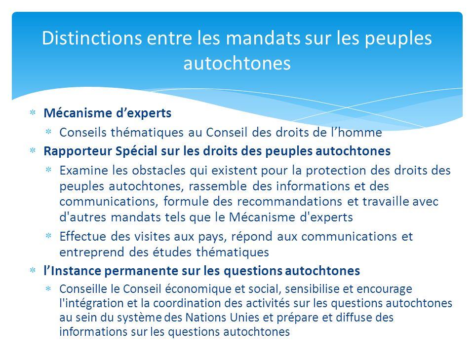Mécanisme dexperts Conseils thématiques au Conseil des droits de lhomme Rapporteur Spécial sur les droits des peuples autochtones Examine les obstacle