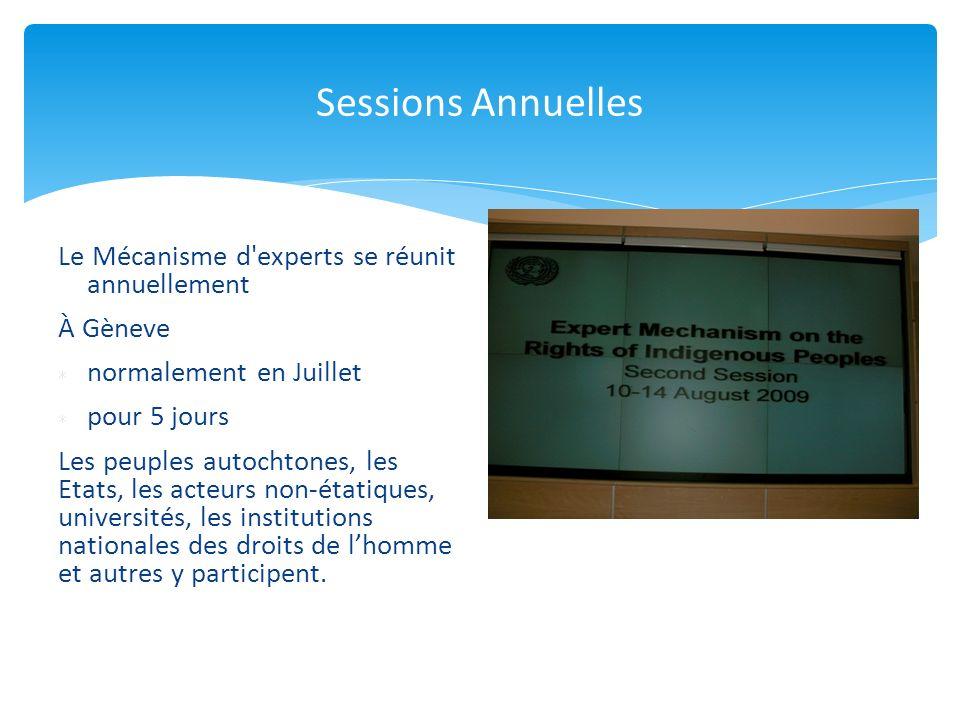 Sessions Annuelles Le Mécanisme d experts se réunit annuellement À Gèneve normalement en Juillet pour 5 jours Les peuples autochtones, les Etats, les acteurs non-étatiques, universités, les institutions nationales des droits de lhomme et autres y participent.