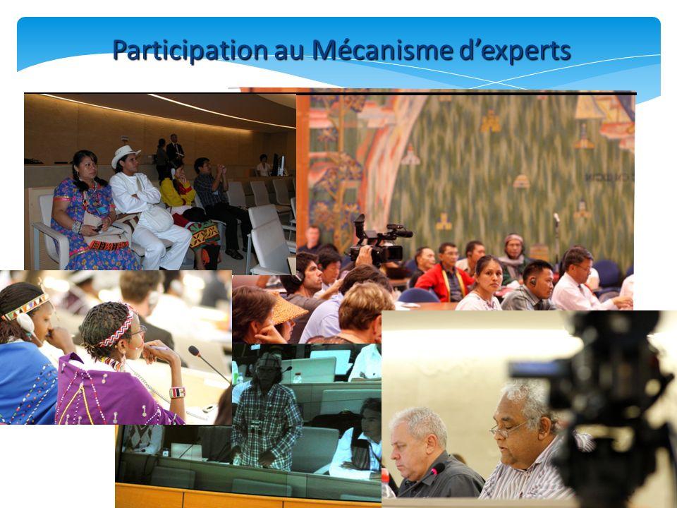 Participation au Mécanisme dexperts