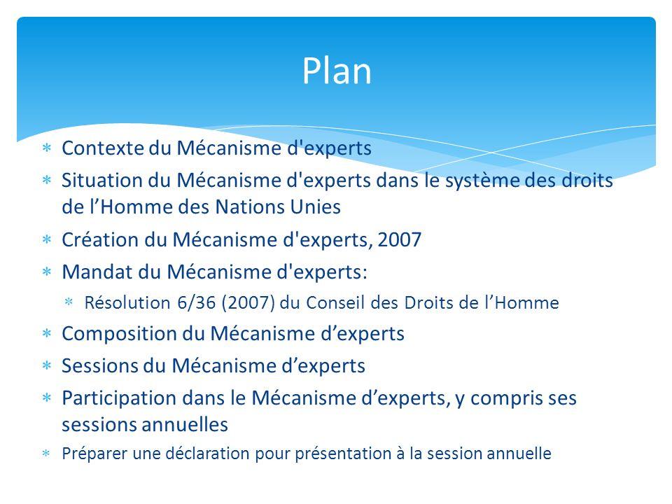 Contexte du Mécanisme d'experts Situation du Mécanisme d'experts dans le système des droits de lHomme des Nations Unies Création du Mécanisme d'expert
