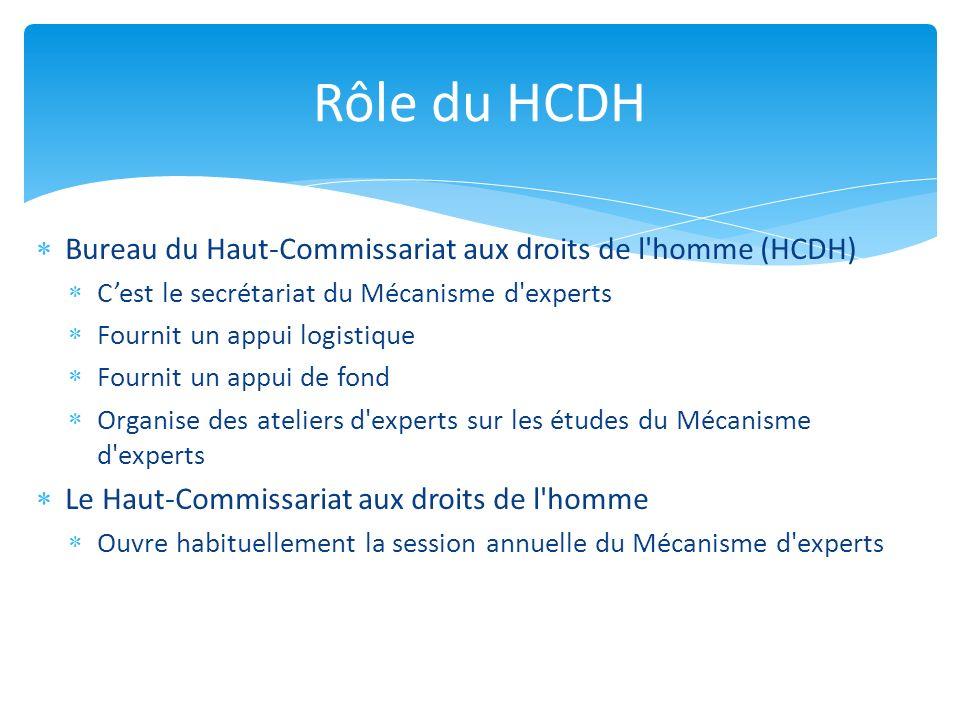 Bureau du Haut-Commissariat aux droits de l'homme (HCDH) Cest le secrétariat du Mécanisme d'experts Fournit un appui logistique Fournit un appui de fo