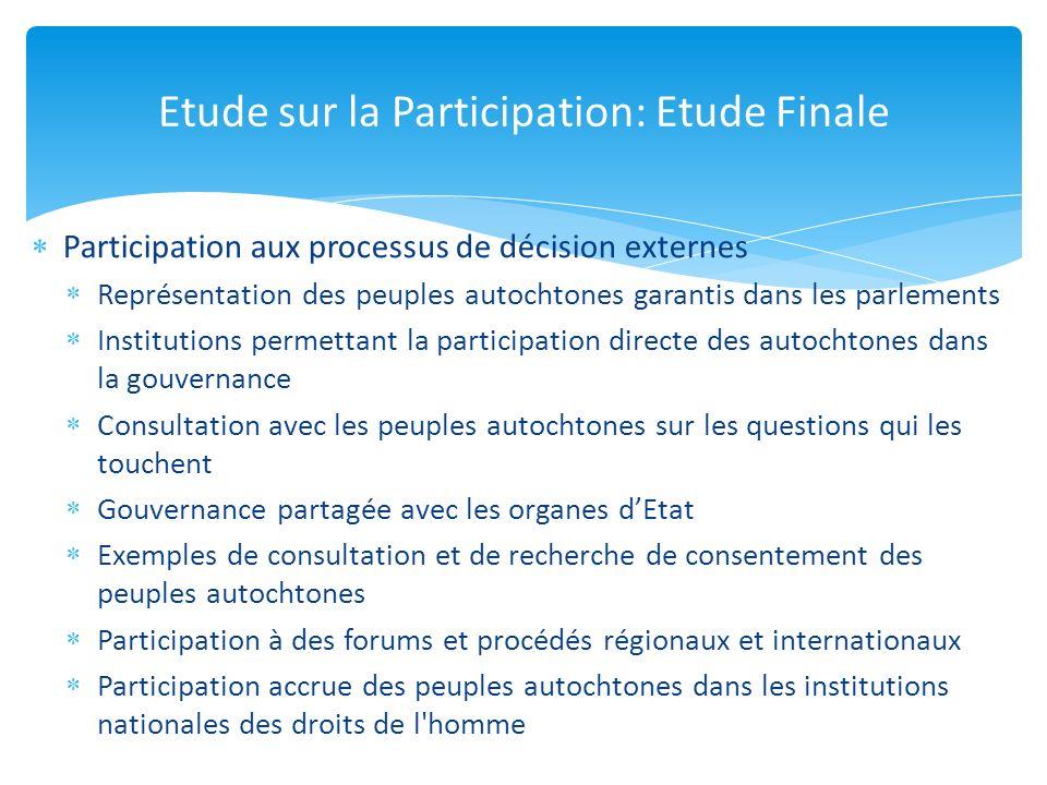 Participation aux processus de décision externes Représentation des peuples autochtones garantis dans les parlements Institutions permettant la partic