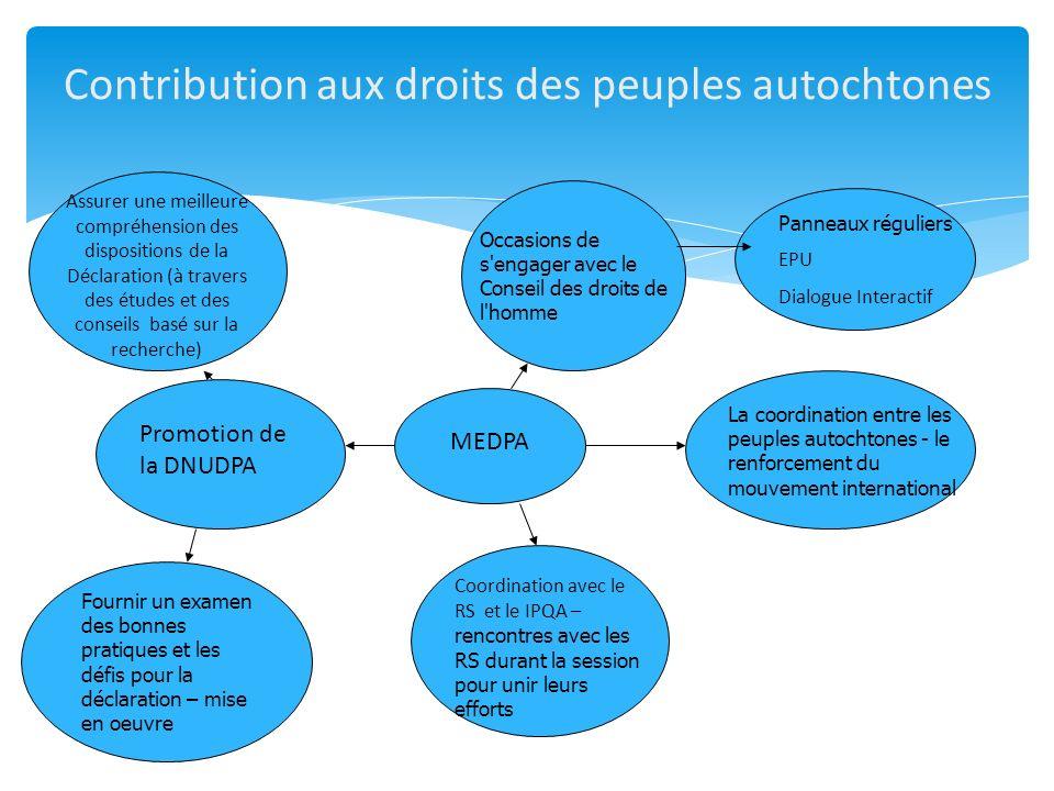 Contribution aux droits des peuples autochtones MEDPA Assurer une meilleure compréhension des dispositions de la Déclaration (à travers des études et