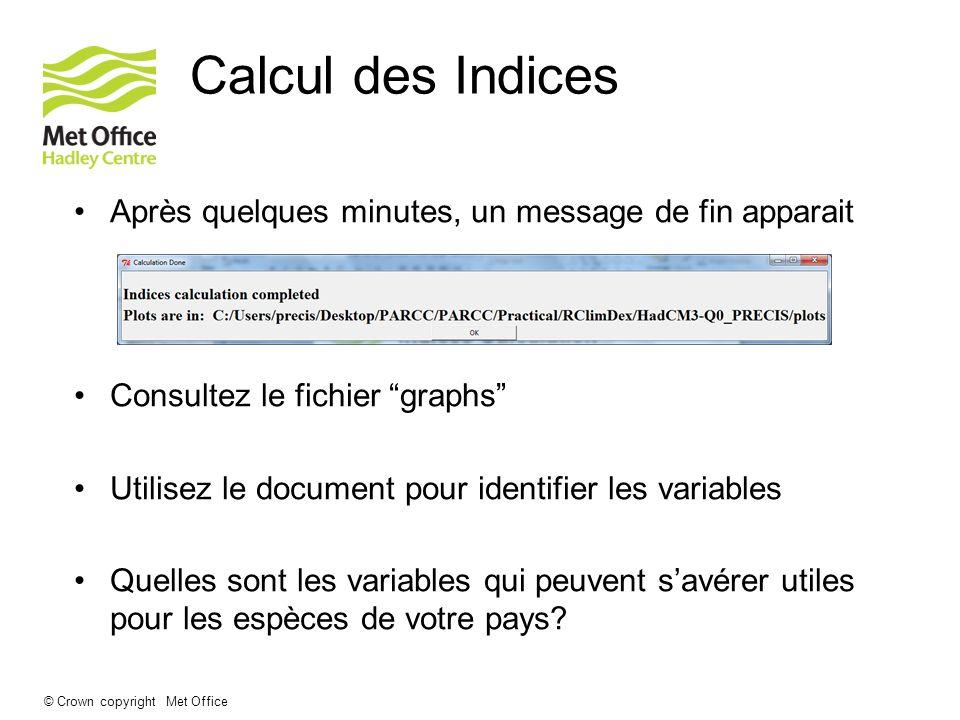 © Crown copyright Met Office Calcul des Indices Après quelques minutes, un message de fin apparait Consultez le fichier graphs Utilisez le document po