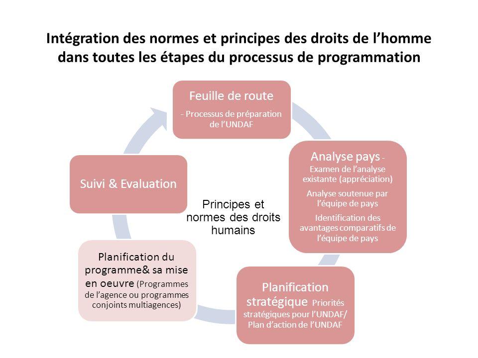 Feuille de route - Processus de préparation de lUNDAF Analyse pays - Examen de lanalyse existante (appréciation) Analyse soutenue par léquipe de pays