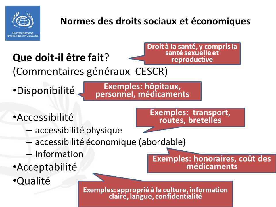 Normes des droits sociaux et économiques Que doit-il être fait? (Commentaires généraux CESCR) Disponibilité Accessibilité – accessibilité physique – a